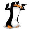 Tańczący pingwin Wzór