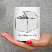 Kot Schrodingera w pudełku