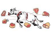 Mięsna Krowa Wzór
