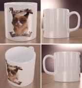 Grumpy Cat Wizualizacja