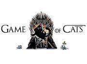 Game of Cats Wzór na Kubek