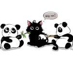 Pandy Bawiące się z Kotem Wzór na Kubek